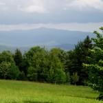 Blick vom Brennes zum Gr. Falkenstein 1312 m