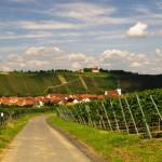 Mainradweg in Bayern