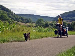 Radtouren mit Hund